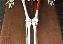 """【骨盤矯正・下半身太り】あなたの下半身が細くならない理由は""""立ち方""""にあった!!【むくみ・O脚】"""